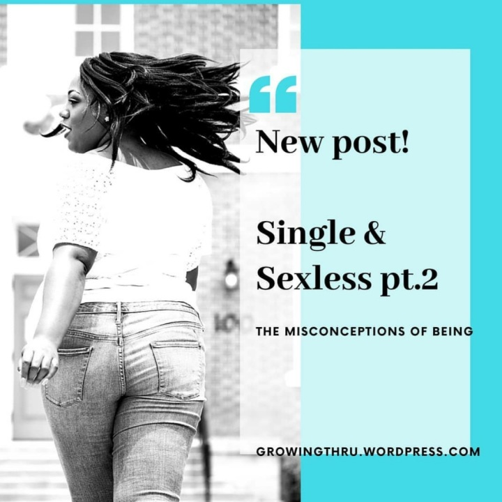 The Misconceptions of being Single & Sexless pt.2